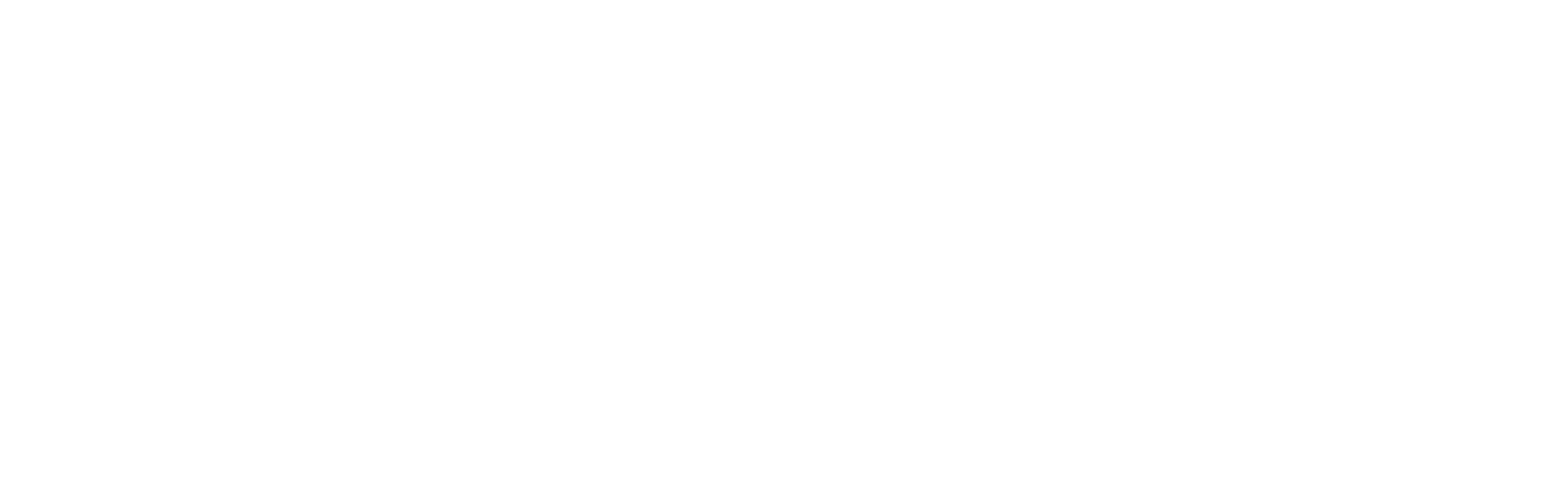 Anika Logo